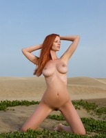 Ariel in The Heat Is On (nude photo 11 of 16)