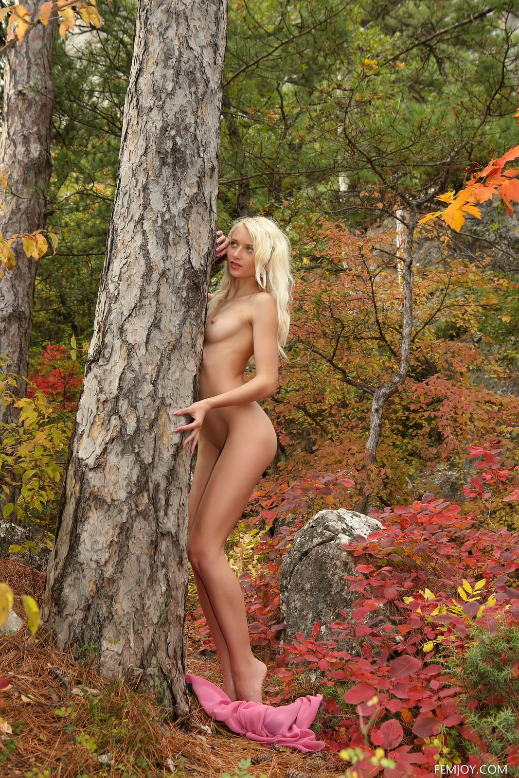 Stunning Naked Girl Adelia Posing In The Autumn Woods By Femjoy 16 Photos  Erotic Beauties-4618