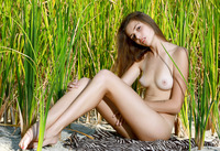 Elle in Hiding In The Grass II by MPL Studios (nude photo 4 of 12)