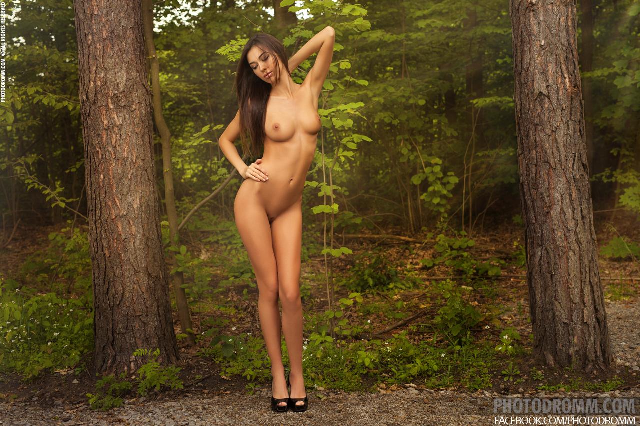 Jackie In The Forest Z Photodromm 12 Fotografije Erotic-5382