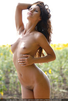 Lola in Sunflowers (nude photo 16 of 16)