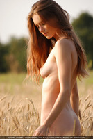 Natural Nude Beauty (nude photo 4 of 16)